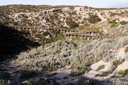 Seal Bay on Kangaroo Island, Australia