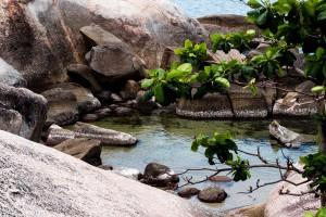 Hin Tai & Hin Yai / Koh Samui Travel Guide by IheartAlice.com