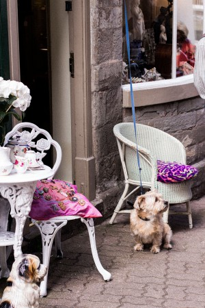 Hay on Wye Travel Guide / Wales Travel Diary