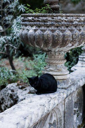 Quinta da Regaleira / Sintra Travel Guide - Portugal Roadtrip Travel Diary by IheartAlice.com