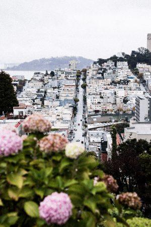 San Francisco Travel Diary - California Roadtrip w/ Air Berlin / Travelblog & Lifestyleblog IheartAlice.com by Alice M. Huynh