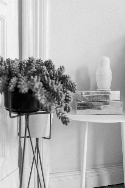 Living Room Inspiration: FERM Living Plantstand from CONNOX / IheartAlice.com