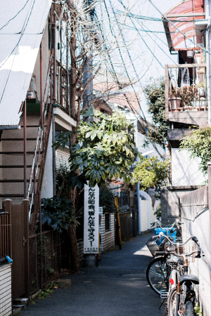 Experience Local Tokyo – Mit Airbnb in Japan / Travel & Lifestyle Blog by IheartAlice.com