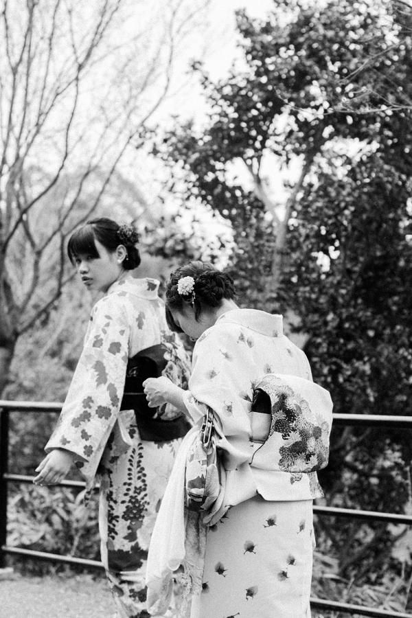 Best Hanami Sakura Spot in Kyoto: Hirano Jinja Shrine / Travel Diary & Guide by IheartAlice.com - Travelblog & Lifestyleblog by Alice M. Huynh