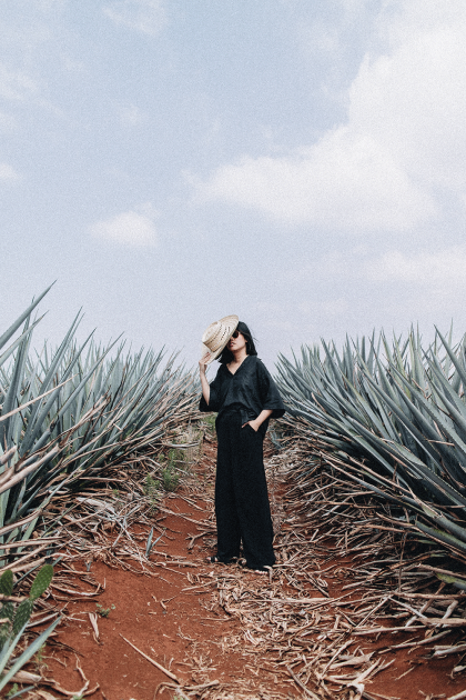 Eine Reise zu den Wurzeln des Tequila mit Patron / Jalisto, Mexico Travel Diary - My trip to Hacienda Patron, the birthplace of Tequila / Travel, Lifestyle & Foodblog by Alice M. Huynh - iHeartAlice.com