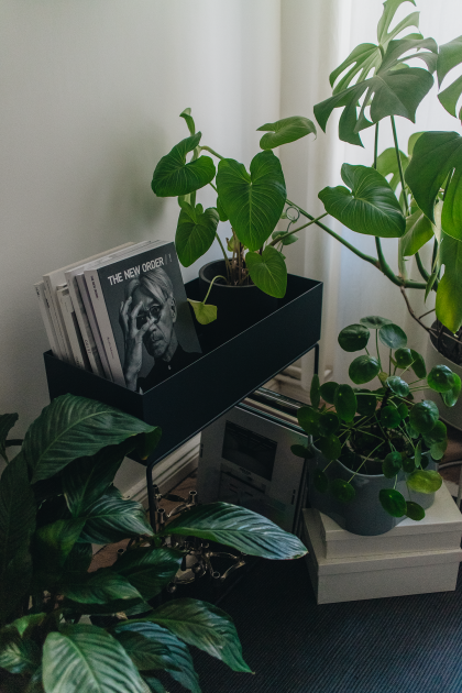 Plantcorner Inspiration with ferm Living Plant Box & Flinders / Minimalist Interior Inspiration with iHeartAlice.com by Alice M. Huynh