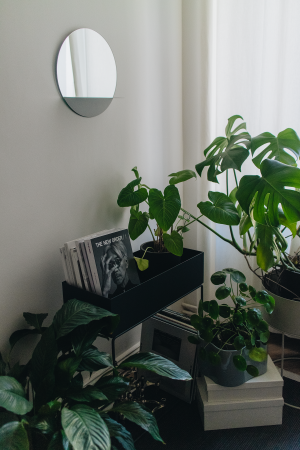 Plantcorner Inspiration with ferm Living Plant Box & Flinders / Minimalist Interior Inspiration with iHeartAlice.com by Alice M. Huynh