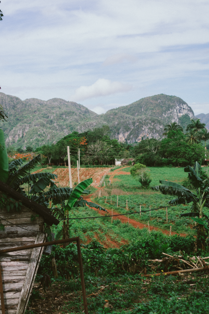 Vinales, Cuba Streetlife Photography by Alice M. Huynh / iHeartAlice.com – Travel & Lifestyleblog