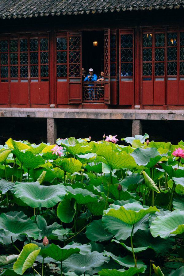 Humble Administrator's Garden in Suzhou – Zhuo Zheng Yuan in Jiangsu Province / Suzhou Travel Guide – Travel, Lifestyle & Fashionblog by Alice M. Huynh / iHeartAlice.com