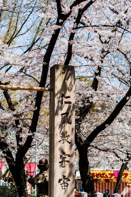 Hanami Season in Osaka / A Quick Travel Guide to Osaka, Japan by iHeartAlice.com – Travel, Lifestyle, Style & Foodblog by Alice M. Huynh