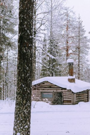 Snowshoeing in Lapland / Lappi Travel Vlog & Quick Guide To Lappland, Finland by iHeartAlice.com - Travel, Lifestyle, Food & Fashionblog by Alice M. Huynh