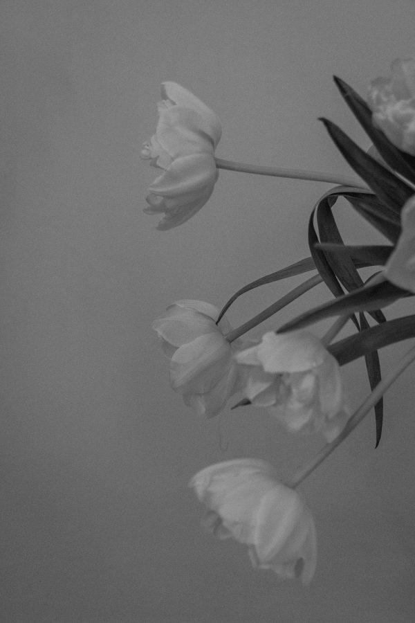 Stine Goya Black Daisy Set / Lifestyle, Food, travel & Fashionblog by Alice M. Huynh