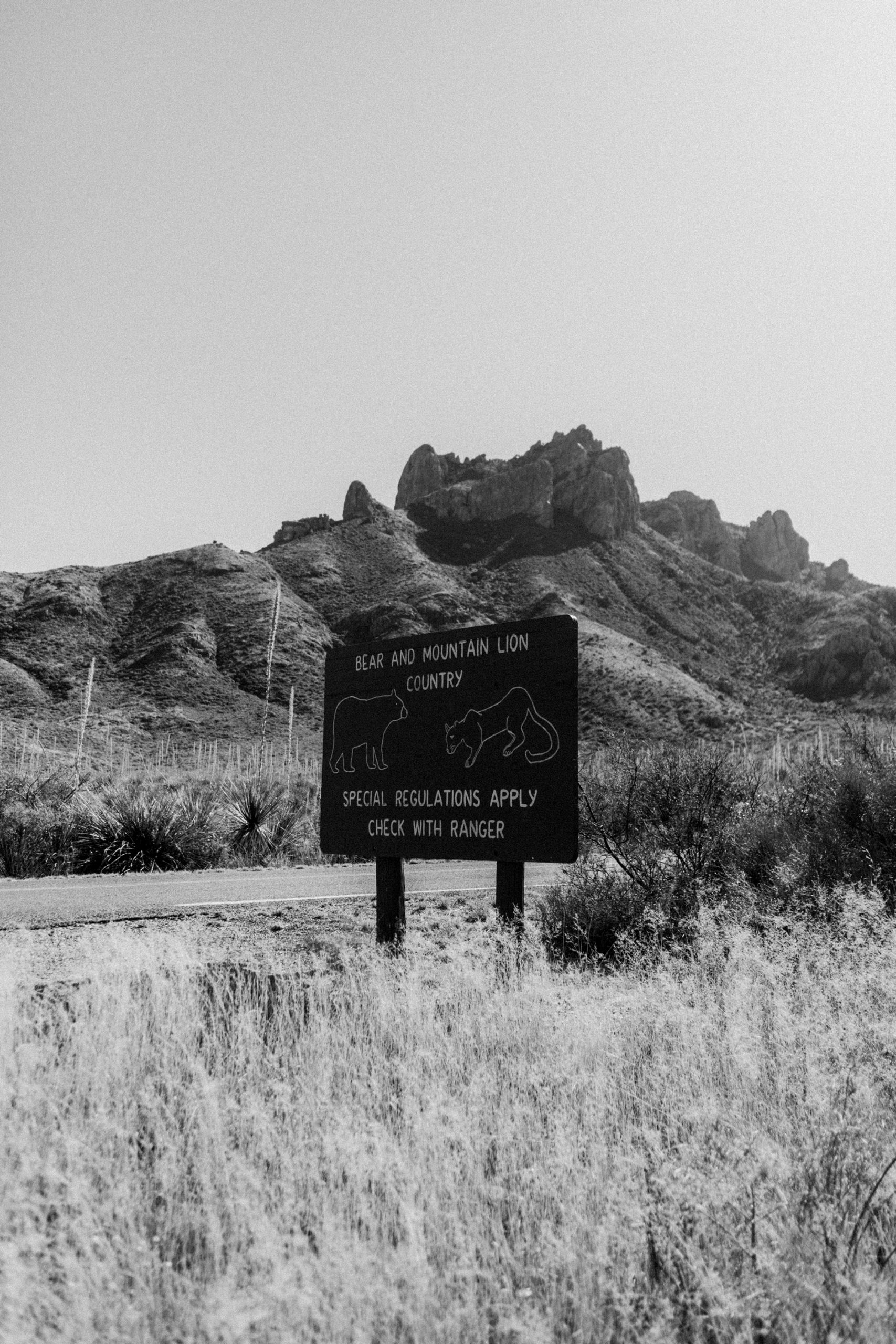 Inside Big Bend Nationalpark – A Texas Roadtrip Travel Video / Travel Diary + Video by iHeartAlice.com - Lifestyle, Travel, Fashion & Foodblog by Alice M. Huynh / Texas Travel Guide