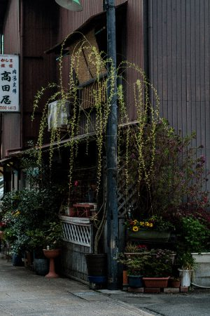 On The Streets Of... Beppu 別府 by iHeartAlice.com – Travel, Lifestyle, Fashion & Foodblog by Alice M. Huynh / Japan Travel Guide