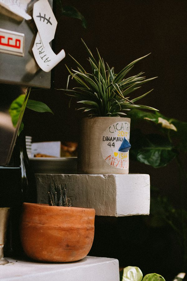 A Quick Coffee Guide To Mexico City / CDMX Travel Guide by Alice M. Huynh - iHeartAlice.com Travel, Fashion & Lifestyleblog / Mexico Travel Diary